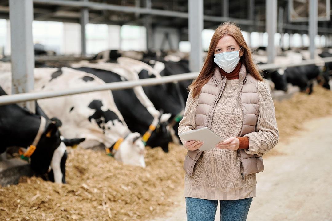 Giovani e agricoltura, a Brescia fondi reigonali a 229 aziende